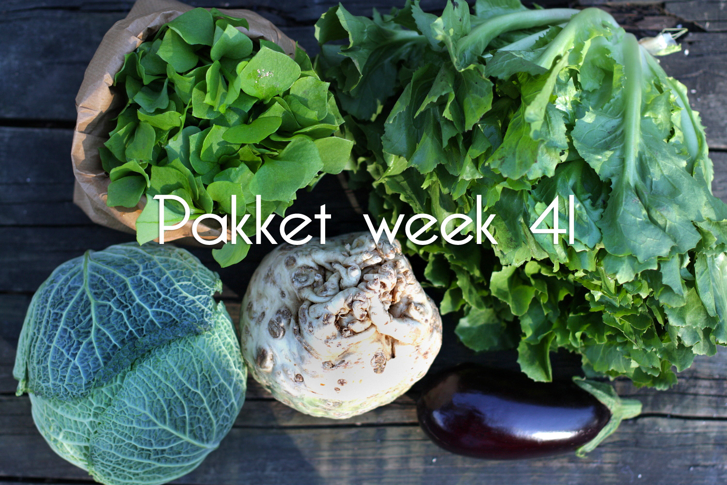 pakket bietenrood week 41